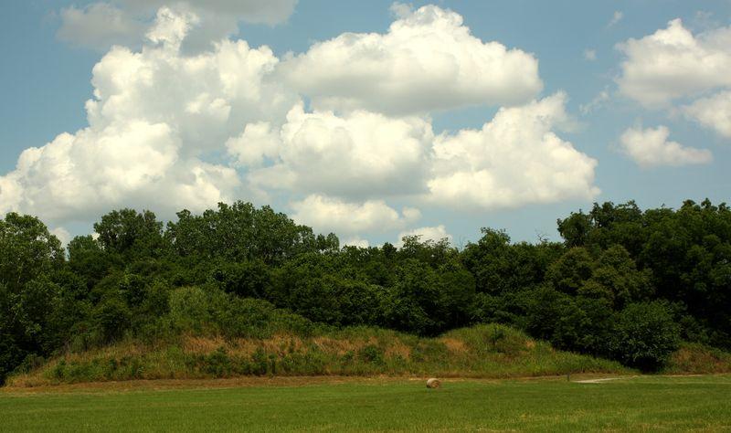 Looted Spiro Mound