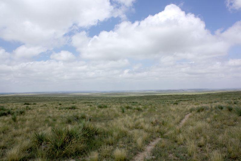 No Man's Land Landscape