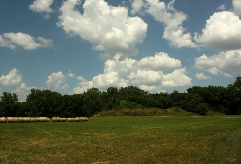 Hay and Mounds