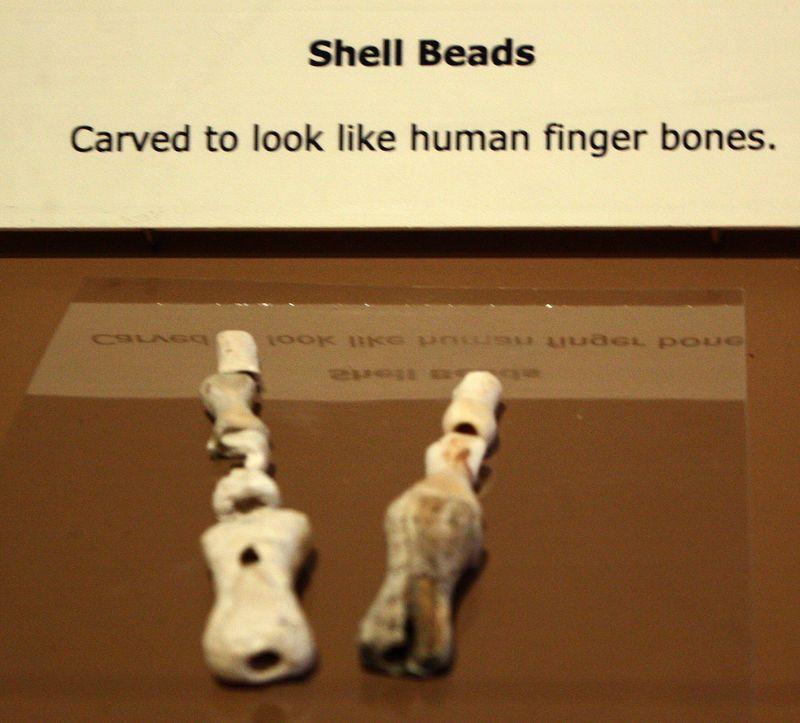Finger Bone Beads