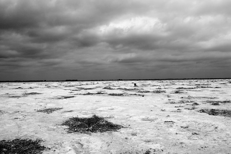 Digging The Salt Plains