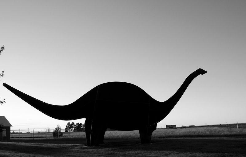 Boise City Brontosaurus