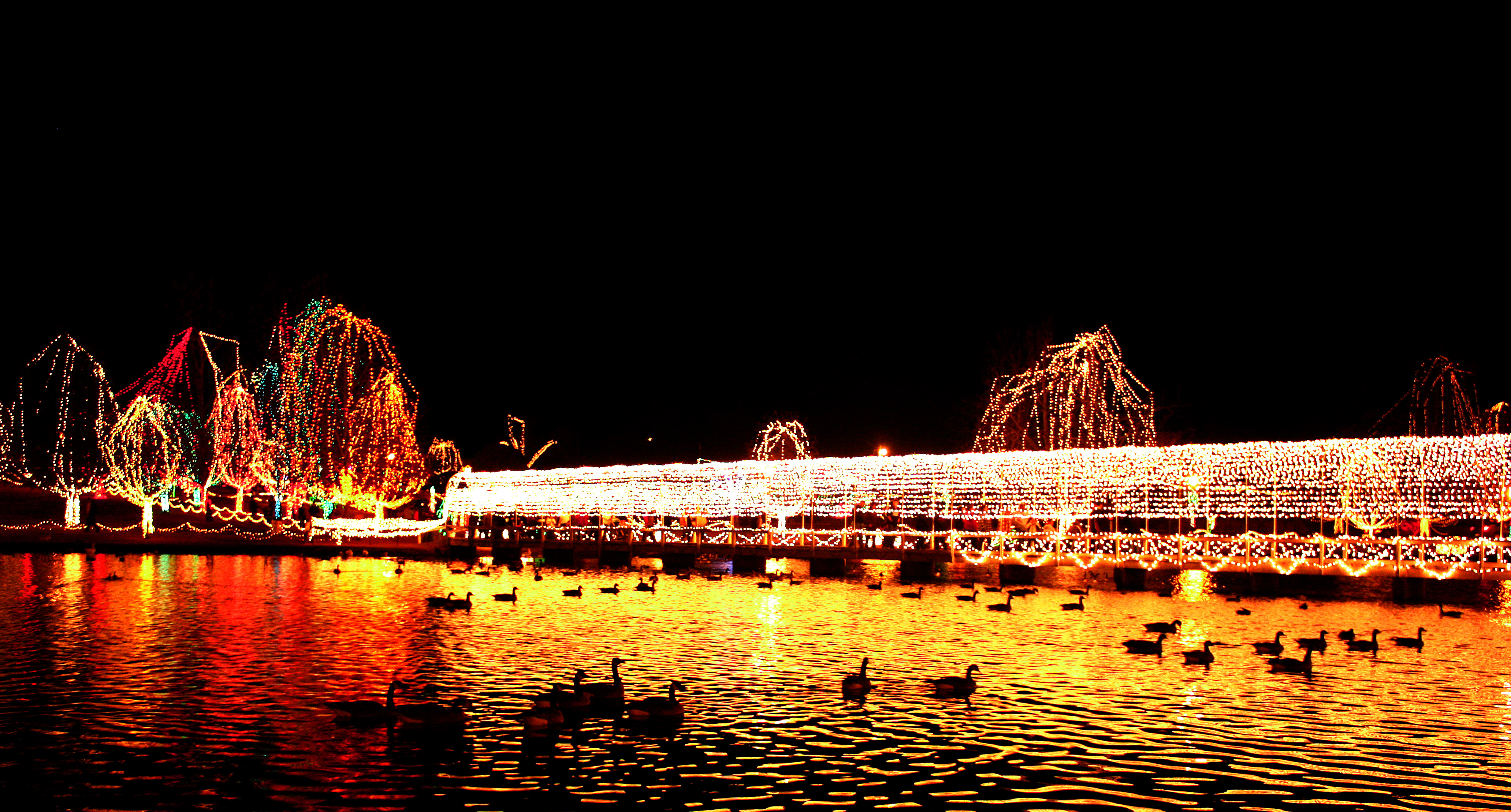 november edit festival of lights - Chickasha Christmas Lights