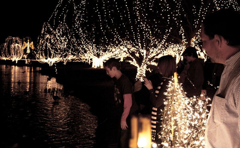 November Edit Festival of Lights 2
