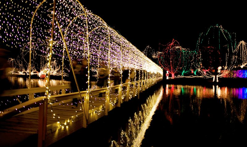 The Bridge of Lights