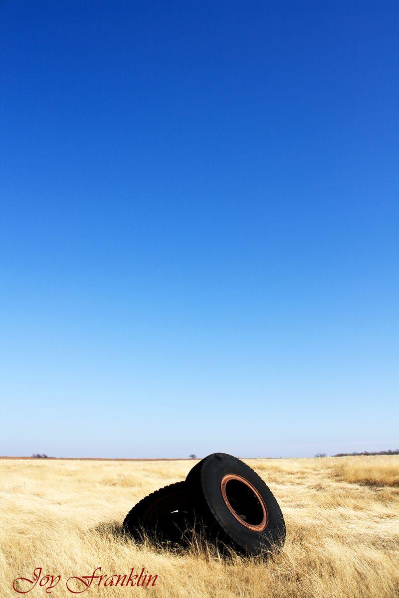 Tires in Field digi