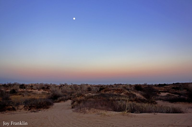 Dusk on the Little Sahara