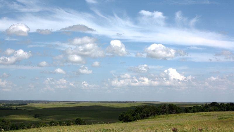 Tall Grass Prairie Preserve Overview