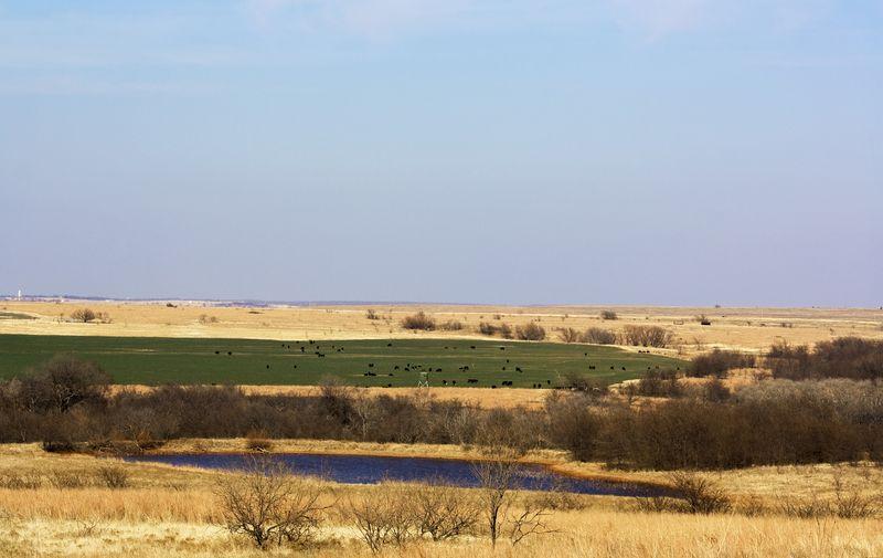Northern View Monument Hill Addington