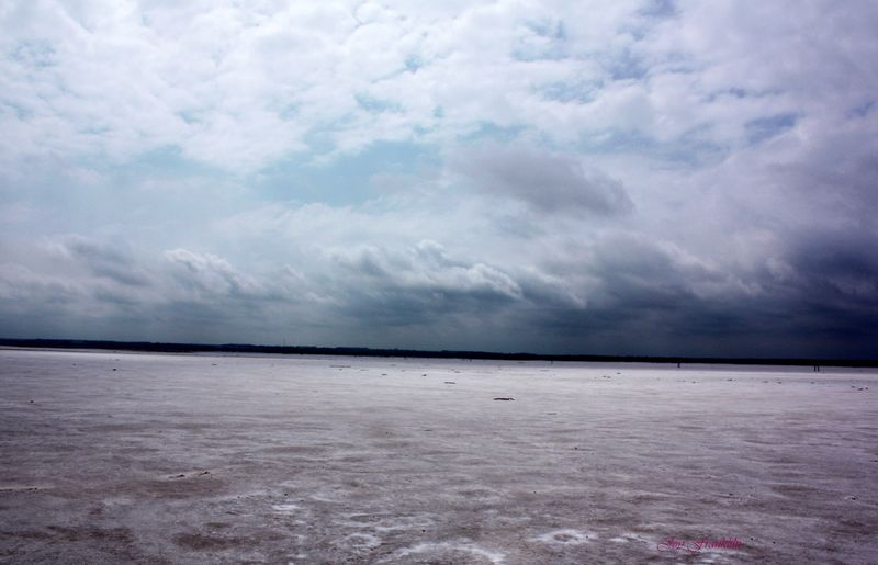 Great Salt Plains Jan 12