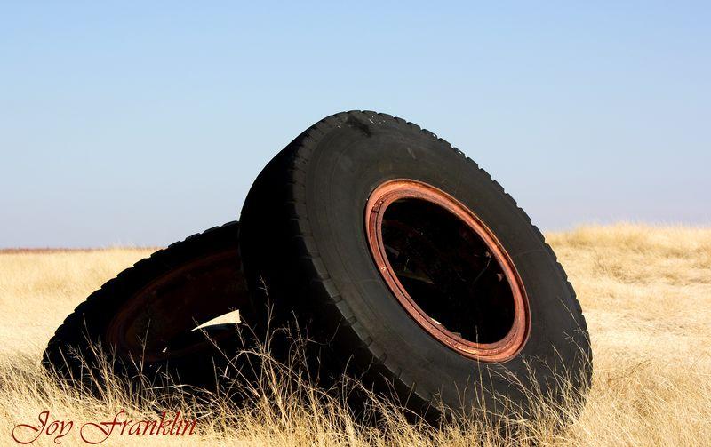Tires in Field 2