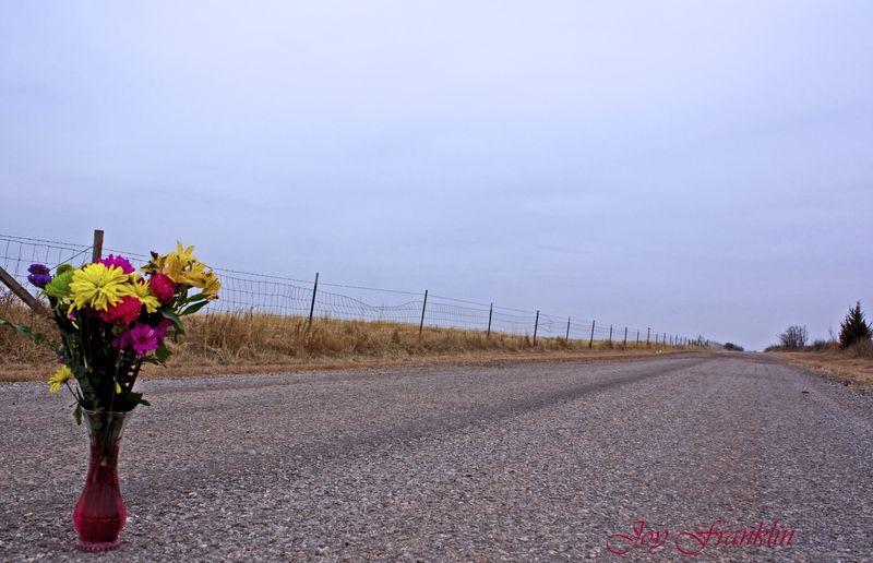 Flowers on road 2