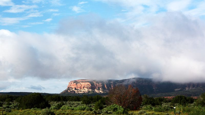 Fog around Zuni