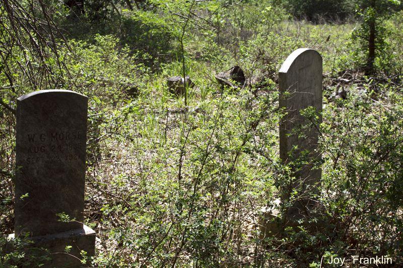 WG Morse Grave