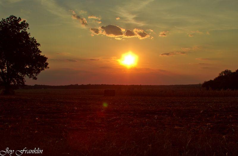 HAY Sunset (1 of 1)