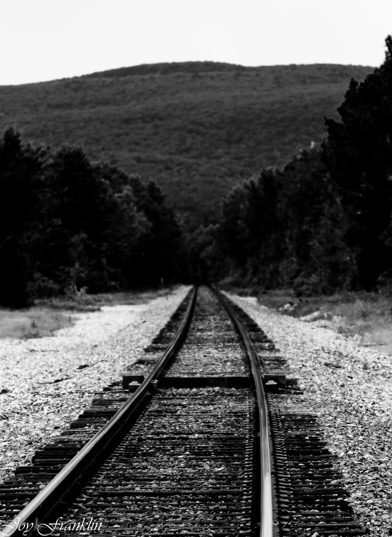 Tracks in black and white (1 of 1)