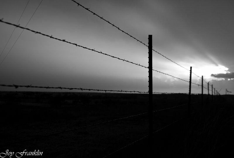 Black and White barbed wire fence in sunset (1 of 1)
