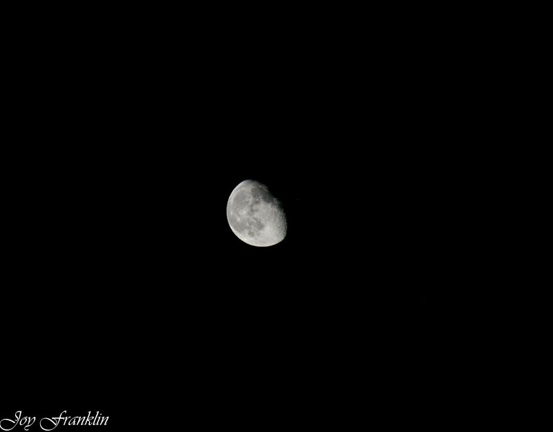 Beautiful Moon (1 of 1)