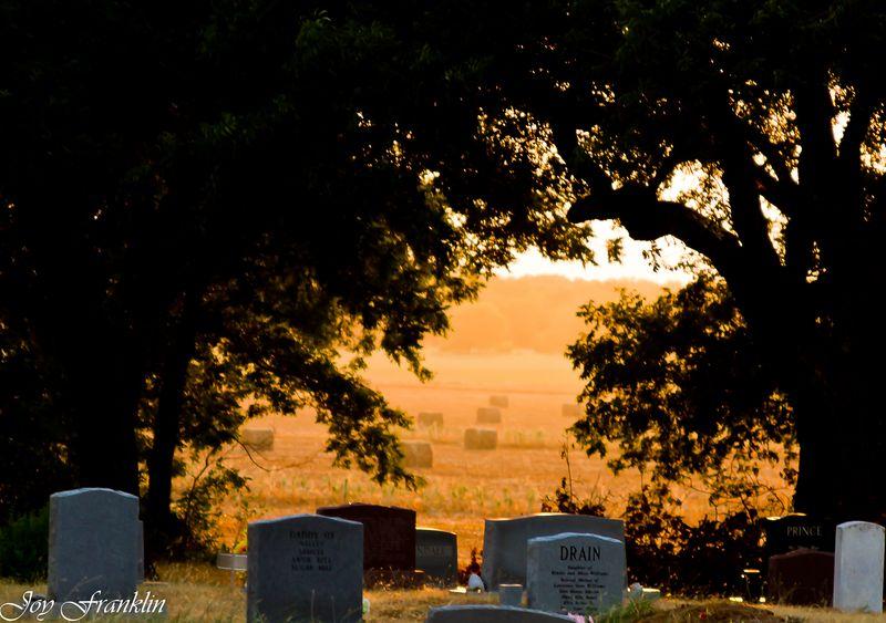 5 Mile Cemetery Hennipen (1 of 1)