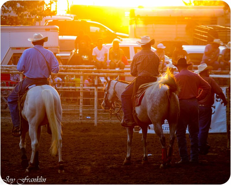 Rodeo in the Sun (1 of 1)