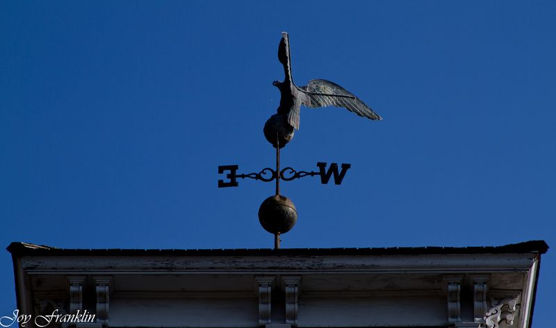 Old Weather Vane on Creek Capitol  (1 of 1)