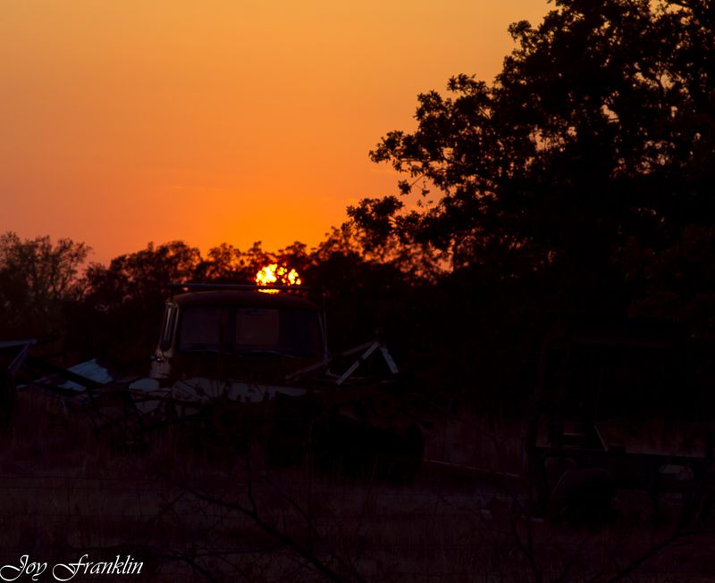 Sunset in the Pasture (1 of 1)