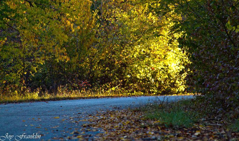 Oklahoma Country Road-124