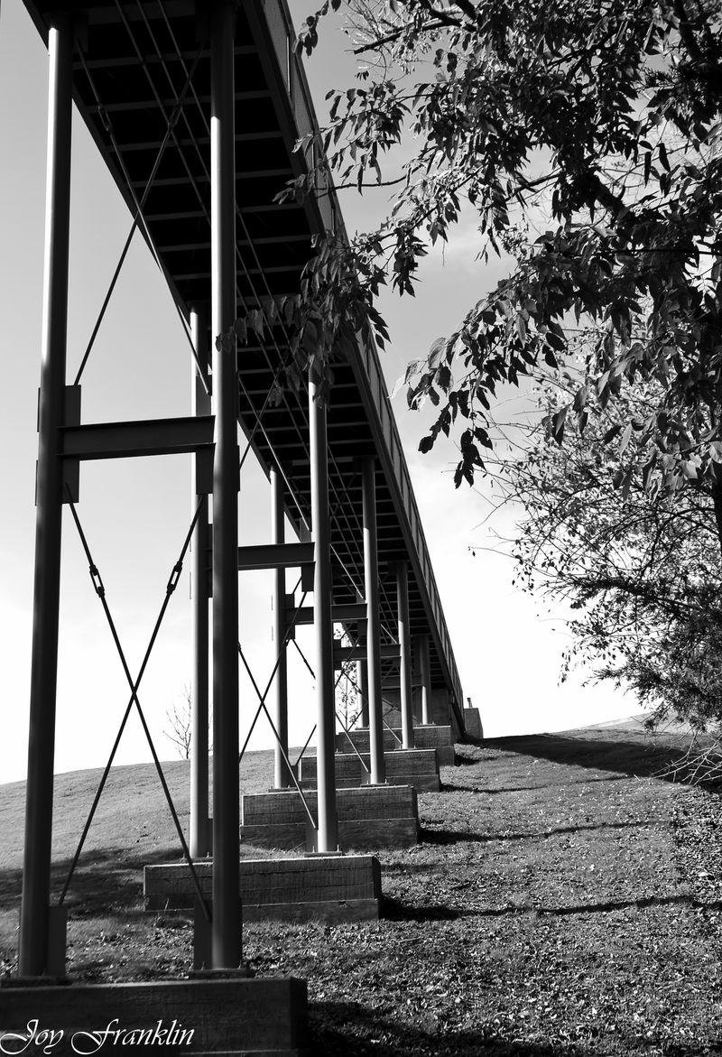 Walkway at Chickasaw Center in Sulphur-031