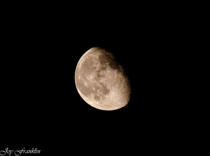 June Moon  (1 of 1)