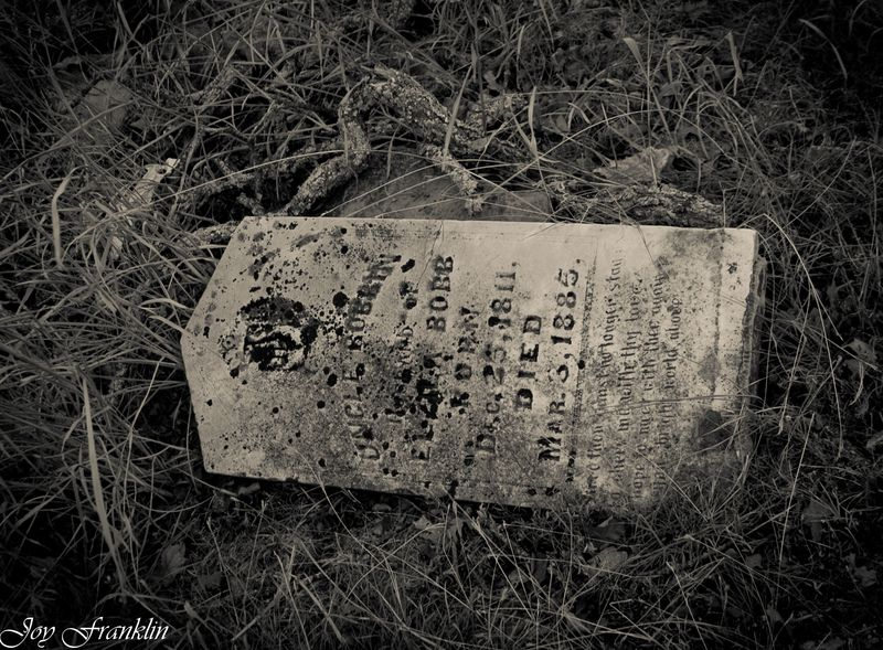 Uncle Robbin 5 Mile Cemetery Hennipen (1 of 1)