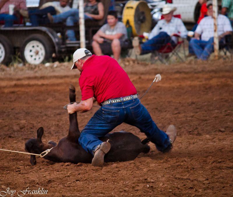 Oklahoma Rodeo  (1 of 1)