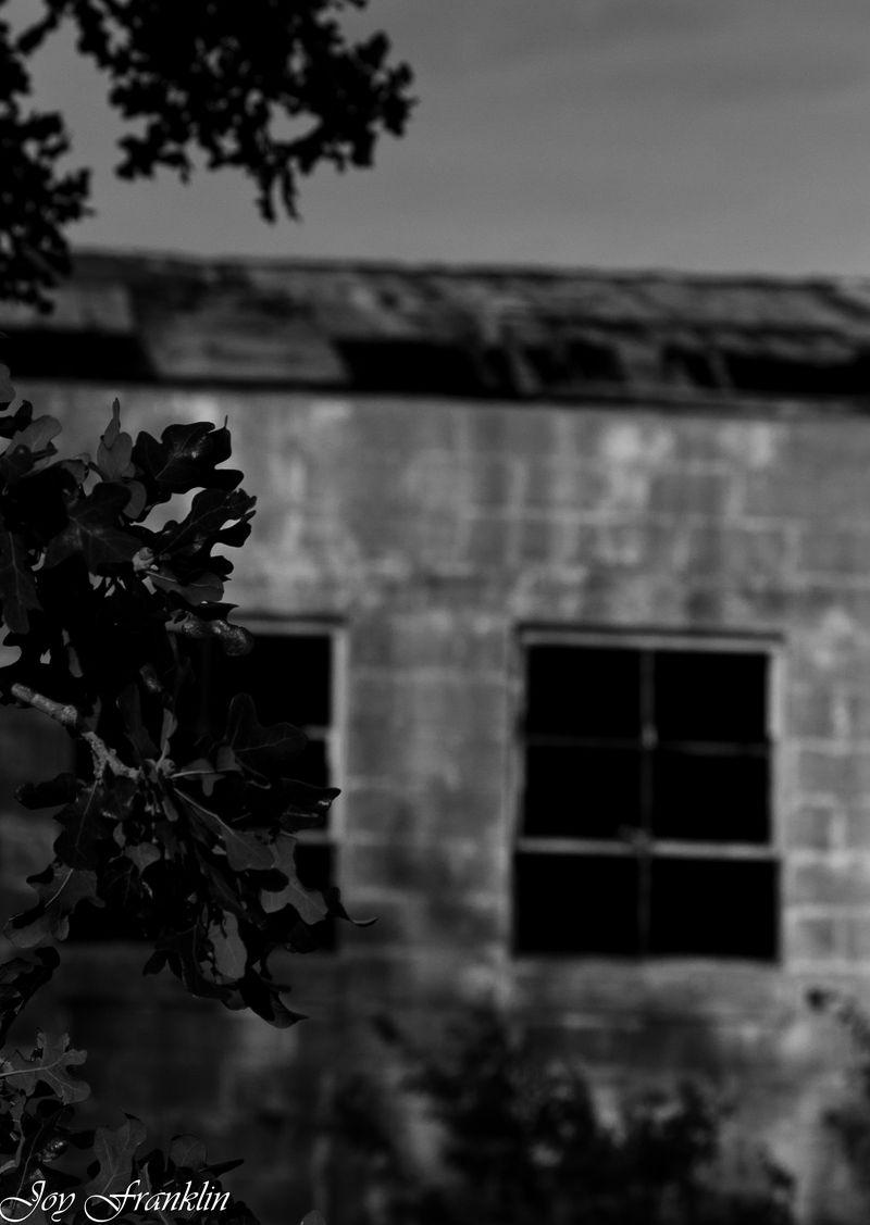 Empty Building-232
