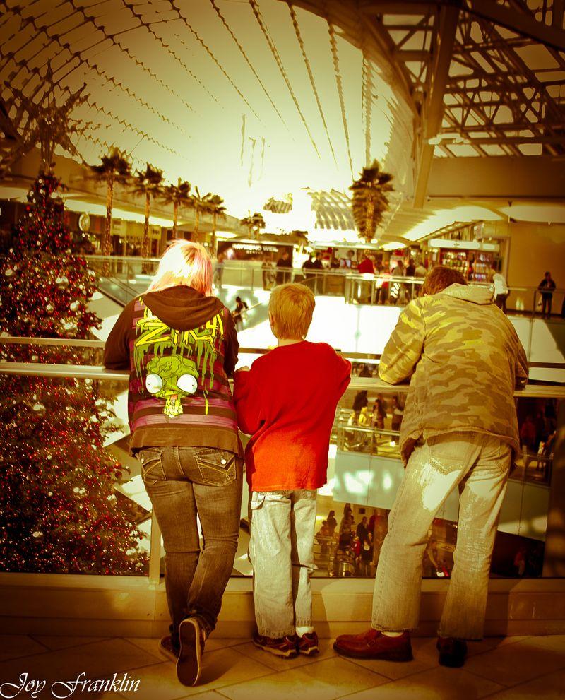 In the Galleria-1