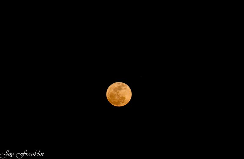 Moon and Darkness-1