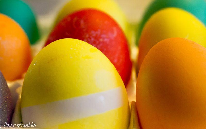 Bright Eggs-1