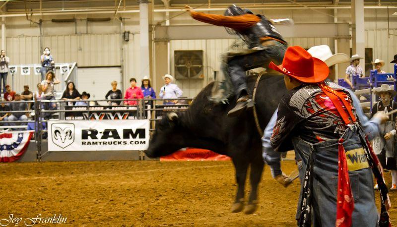 Cowboy bullrider  (1 of 1)