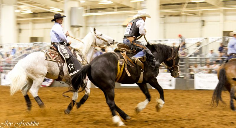 Ride 'em Cowboy  (1 of 1)