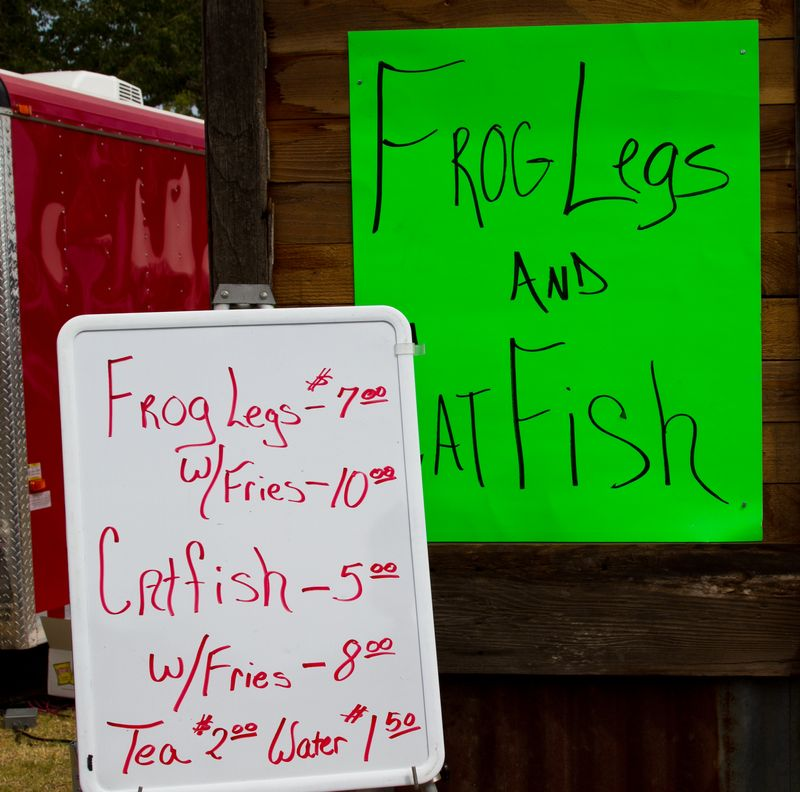 Frog Legs and Catfish -5498