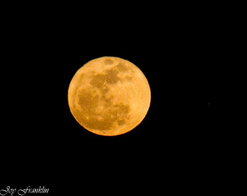 Amazing April Moon-1