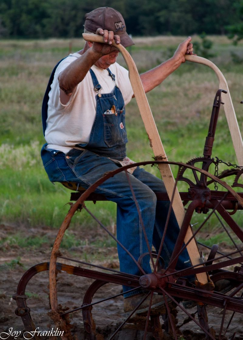 Old fashioned plow-0644