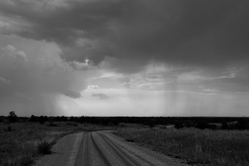 Country road in black and white-4918