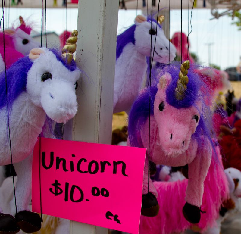 Why Yes I will photograph your Unicorns-5494
