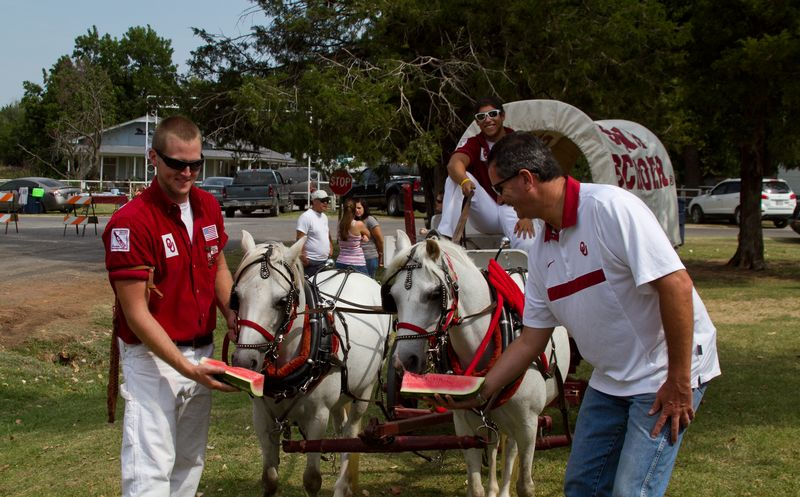 Boomer and Sooner at Rush Springs Watermelon Festival OU -5489