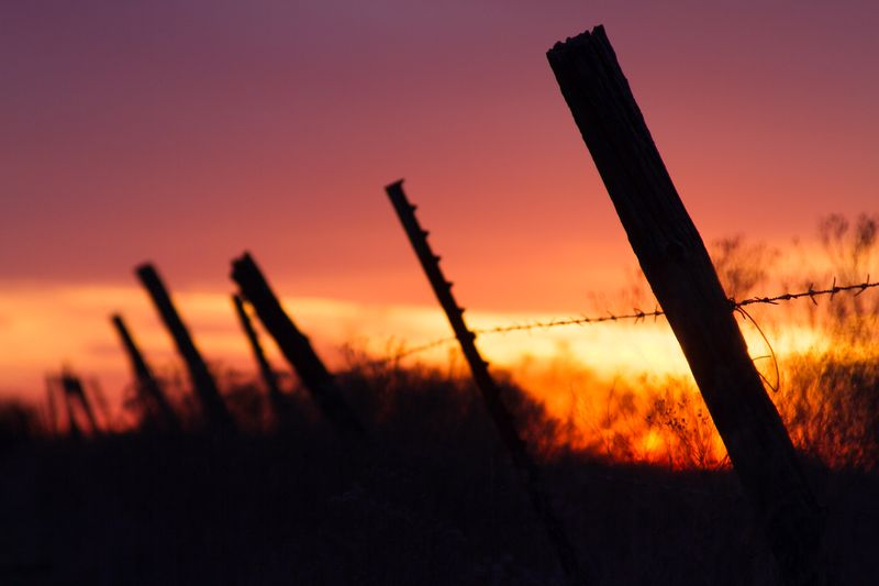 Barbed Wire Sunset-0060