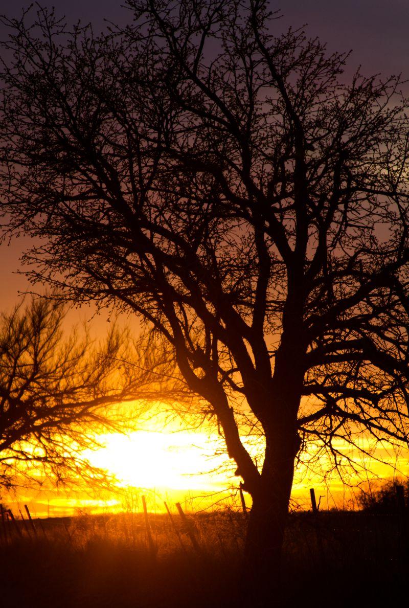 Sunset -9971