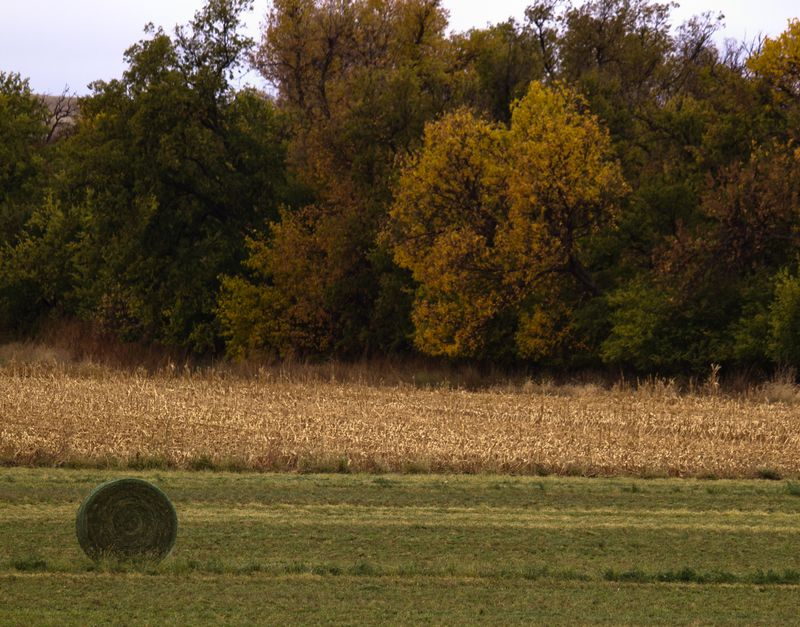 October in Kansas-8568