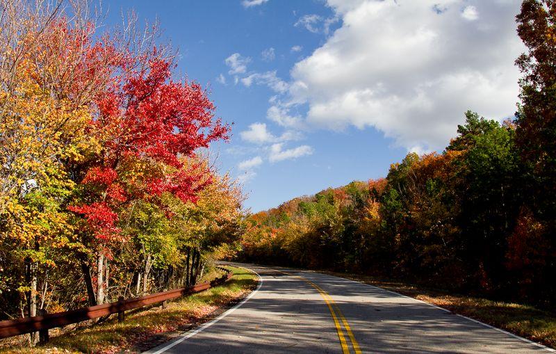 Talimena Drive in the Fall-2643