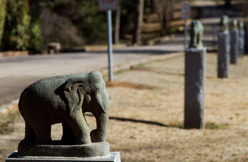 Circus Cemetery at HUGO Oklahoma-6967