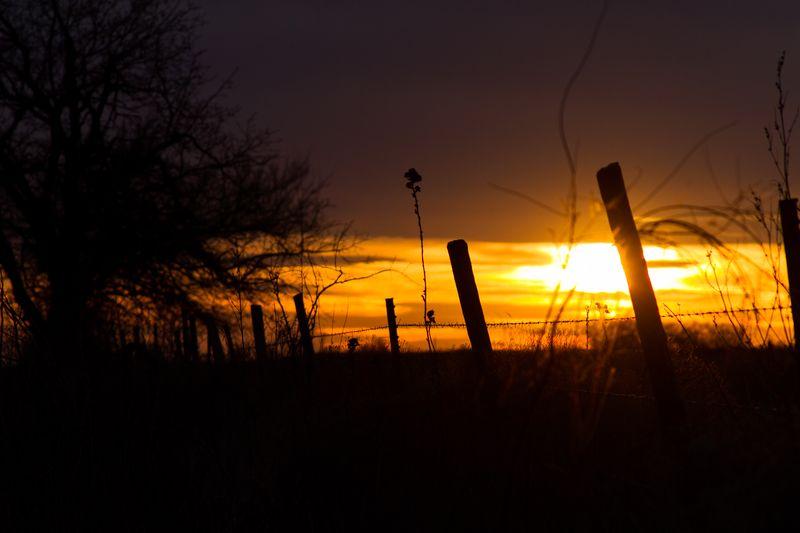 Oklahoma Sunset-9948