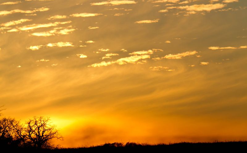 Memorable Sunset-6121